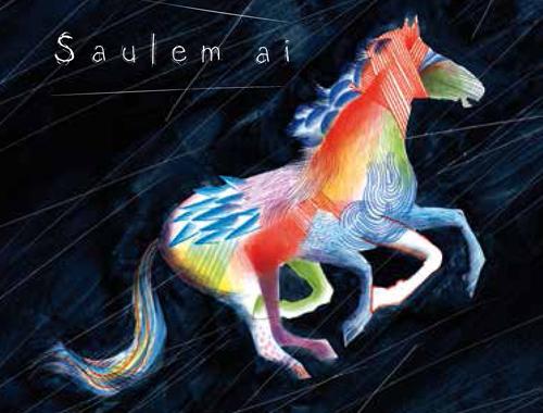 Sauleim Ai